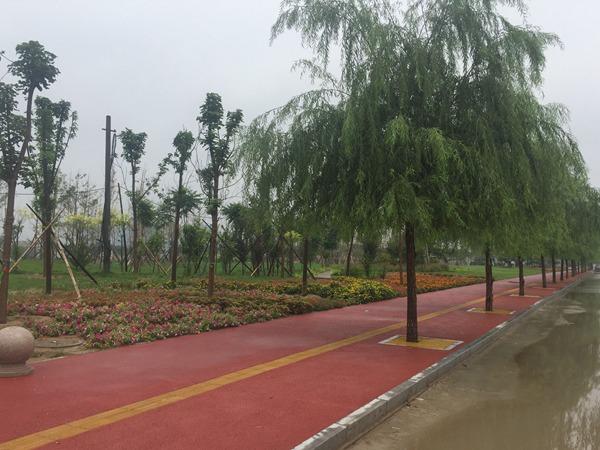 石家庄市赵县澄波公园